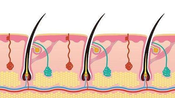毛囊炎用羧宁液体伤口敷料,效果真的好吗?